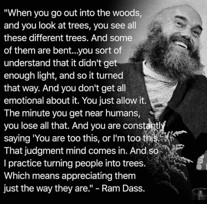 ram-dass-appreciate-trees-be-here-now-709x699
